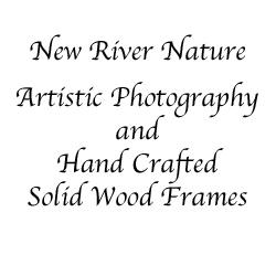 New River Nature - Featured Guest Artists At Gunpowder Springs Artisan Shop