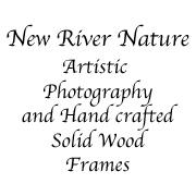 Kerri Farley Of New River Nature To Exhibit At Juried Craft Show November 2015